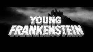 Young Frankenstein Blind Man Young Frankenstein U2013 Comedy U2013 The Happy Video Network