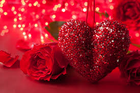 roses valentines day valentines day roses 407759 svetik s day pictures