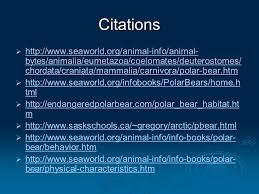 polar bears cecilia mak jacqueline wong raymond helen li