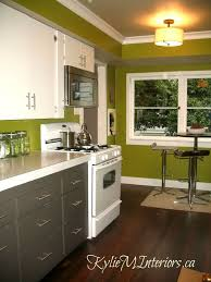Kitchen Cabinets Green Modren Kitchens With White Cabinets And Green Walls Pale Mint