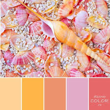 best 25 pink color palettes ideas on pinterest peach color