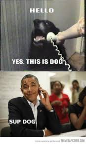 Obama Phone Meme - dog receives an important call the meta picture