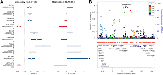 systematic tissue specific functional annotation of the human