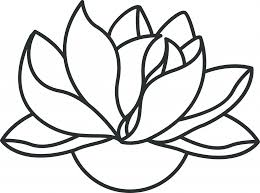 Simple Lotus Flower Drawing - lotus drawing images how to draw a lotus flower 7 steps with