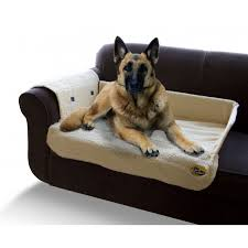outstanding sofa dog bed for couch dogs popular amazing beds youll