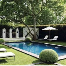 Swimming Pool Backyard Designs by 97 Best Pool Privacy Ideas Images On Pinterest Pool Ideas