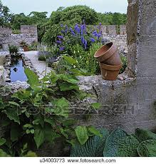 stock photo of gardens looking into free flowing flower garden
