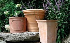 the perfect pot finegardening