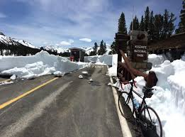 9 943 tioga pass ca will open from east this friday at noon