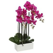 Fake Orchids Artificial Flowers U0026 Plants Home Accents Decor Target