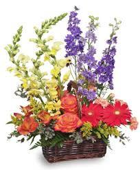 basket of flowers summer s end basket of flowers basket arrangements flower shop