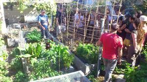 permaculture design course ceres community environment park