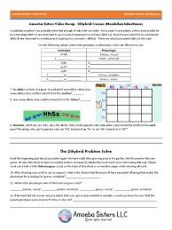 Dihybrid Crosses Worksheet Recap Of Dihybrid Cross By Amoeba