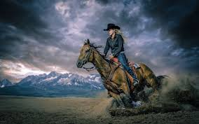 riding horse wallpapers group 73