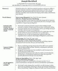 resume wonderful design director of operations resume 4 best