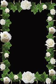 Rose Flower Design Roses Flower Photo Frame Android Apps On Google Play