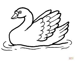 swan in the water coloring page free printable coloring pages