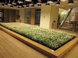 plantes bureau avoir des plantes dans bureau fait pousser la productivité de 15