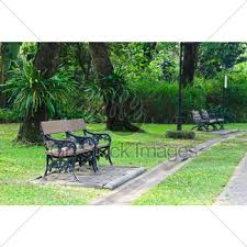 Benches In Park - wood bench gl stock images