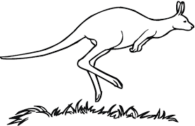 geography blog kangaroo coloring pages