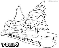 tree coloring pages coloring pages to download and print