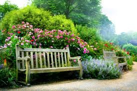 compare prices on frame natural plants online shopping buy low