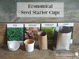 5 economical diy seed starter cups fresh eggs daily