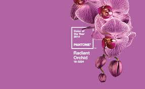 Shades Of Purple Pantone Color Of The Year 2014 Is Radiant Orchid U2013 Another Shade