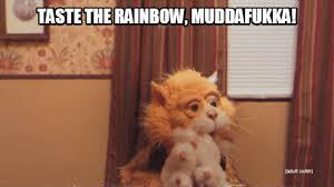 Taste The Rainbow Meme - taste the rainbow muddafukka taste the rainbow motherfucker