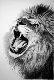 tag easy lion pencil drawing drawing art gallery