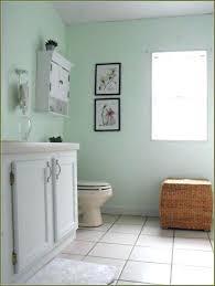 Target Bathroom Storage Target Bathroom Storage Dsellman Site