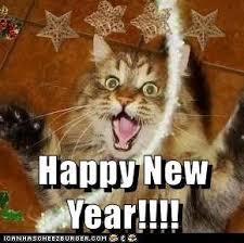 Happy New Year Meme - lolcats happy new year lol at funny cat memes funny cat
