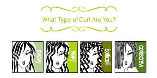 diva curl hairstyling techniques devacurl