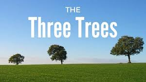 the three trees just one media