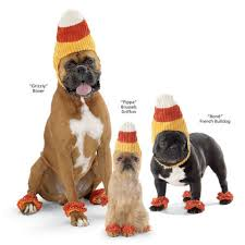 Candy Corn Halloween Costume 3 Simple Dog Halloween