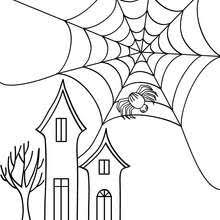Spider On Its Web Coloring Pages Hellokids Com Web Coloring Pages
