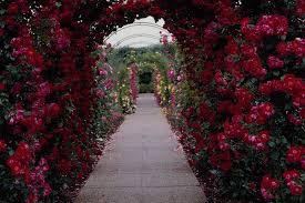 Flower Gardens Wallpapers - beautiful gardens wallpapers wallpapersafari