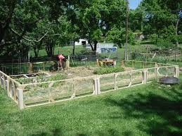Garden Fence Ideas Design Backyard Fence Ideas Home Decorating Designs Garden Landscape