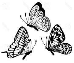 butterfly flying drawing butterfly coloring pages drawing art