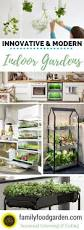 best 10 indoor gardening ideas on pinterest water plants