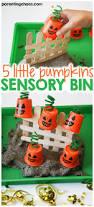 thanksgiving sensory table ideas 5 little pumpkins sensory bin activities sensory table and