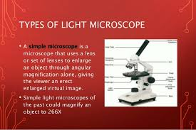 name one advantage of light microscopes over electron microscopes light microscope vs electron microscope