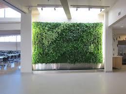 Garden Inside House by Amazing 60 Transitional Garden 2017 Design Decoration Of Kitchen