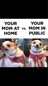 Funny True Memes - best 25 kid memes ideas on pinterest 重庆幸运农场经验之谈 www