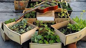 small space vegetable gardening ideas norfolk greenhouses
