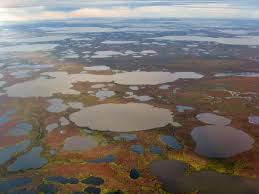 Alaska Fires Permafrost by Scientists Estimate Arctic Permafrost Carbon Feedback For First