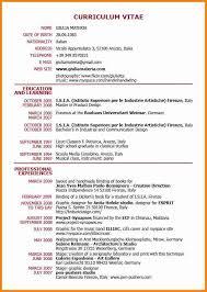 resume exles for jobs pdf to jpg 7 perfect cv exle pdf cv first job