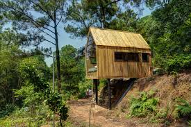 forest house this low cost forest house on stilts is a minimalist dream in