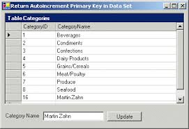 sql create table primary key autoincrement retrieving identity or autonumber values