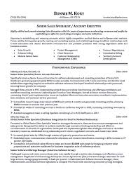 Sample Resumes For Sales Executives 100 Mis Sample Resume Free Sample Resume For Mis Executive